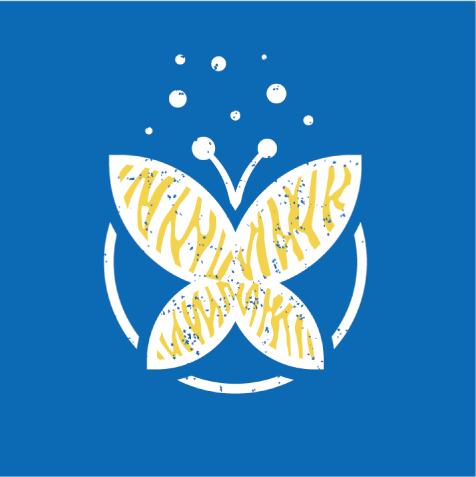 Identité-Les-Papillons-Bleus-Zébrés-C